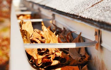Tanwood gutter cleaning companies